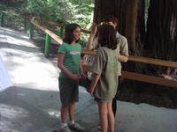 The mystery spot changes the twin's height.