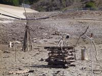 Our driftwood sculptures at Stevens Creek reservoir