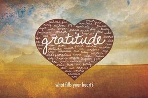Faith Through Gratitude