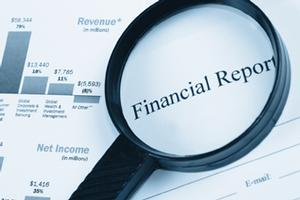 Annual Report, Finance Committee