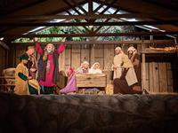 The manger at the stable at Bethlehem